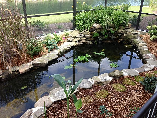 Upgrade Your Pond or Garden